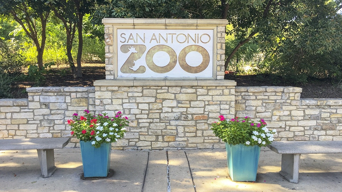 San Antonio Zoo Entrance